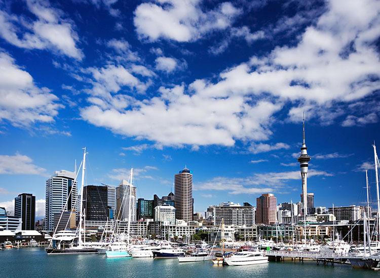 Annee Scolaire Semestre Et Trimestre En Nouvelle Zelande